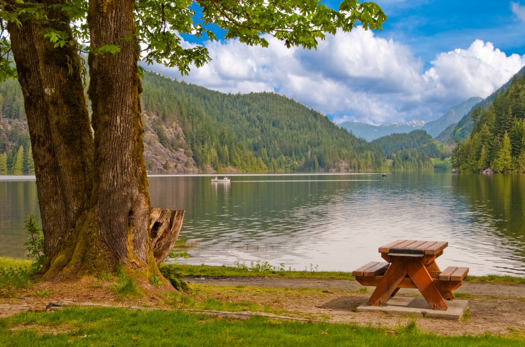 Picnic table in shade of triple tree at the beach of Bunzen Lake